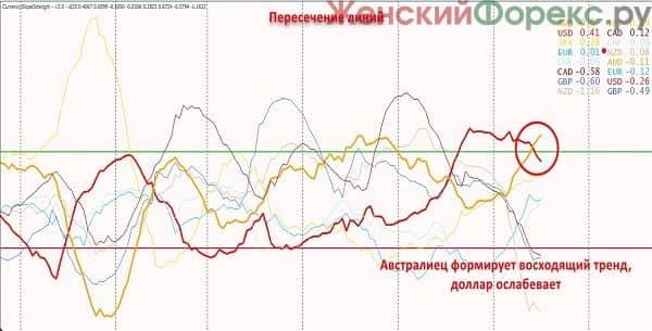 indikator-foreks-css