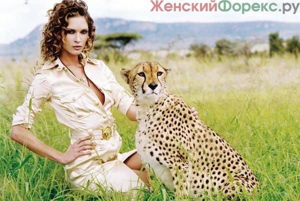 Эффективный советник Gepard