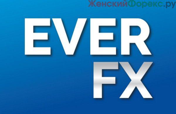 broker-everfx