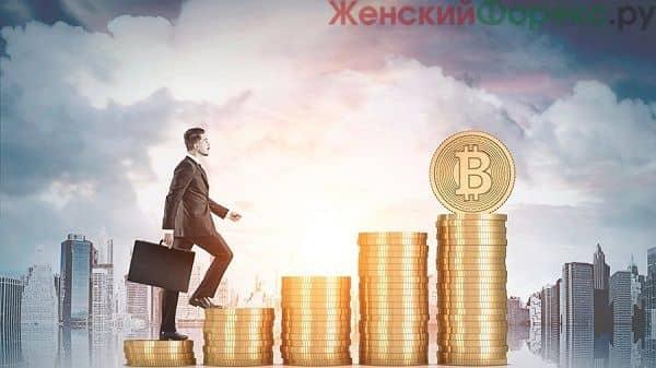 kriptoinvestor