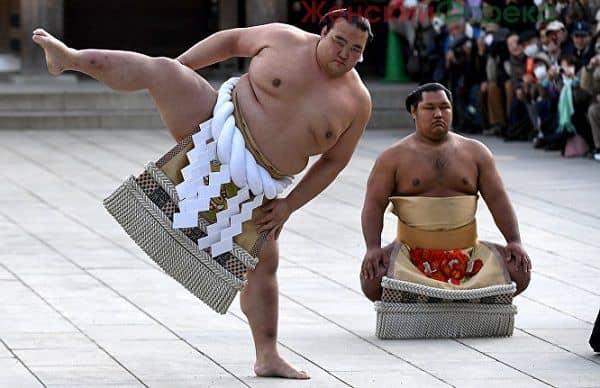 Торговая стратегия на объемах «Sumo Trend»